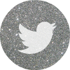 twitter 2 silver round social media icon
